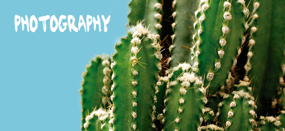 photgraphyw.jpg